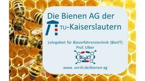 Logo_Bienen_AG